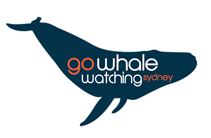 gowhalewatching.png